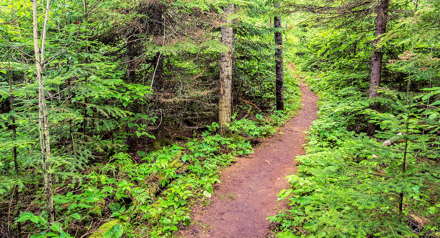 Honeymoon Bluff Trail | Superior National Forest | North Shore Outdoors